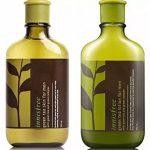 Innisfree-Green-Tea-Skin-For-Men-shopandshop2